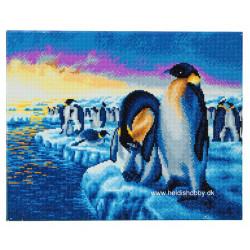 Pingvin familie  40 x 50 cm