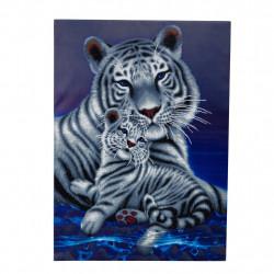 Tiger - loving embrace 65 x 90 cm