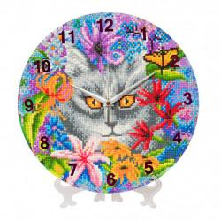 Katte ur