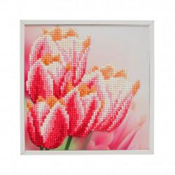 Tulipan 20 x 20 cm diamantbilledet