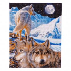 Polar express diamantbilledet 40x50 cm.