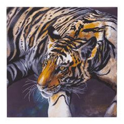 Tiger diamantbillede 70 x 70 cm XL