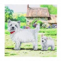 Diamant Kort med hund