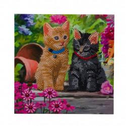 Diamant Kort med katte