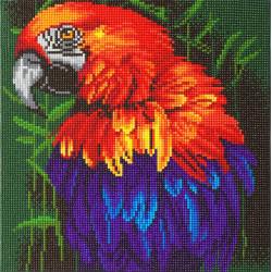 Papagøje  30 x 30 cm diamant billed