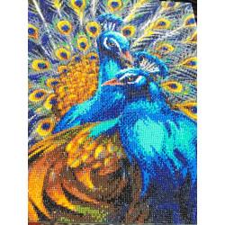 Blå Påfugle 50 x 40 cm Diamant Billede på ramme