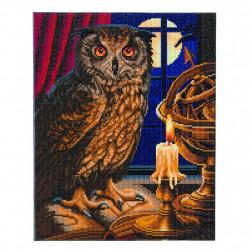 Astrologi Ugle - 40 x 50 cm diamant billede