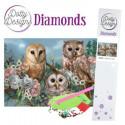25 x 36,50 cm Diamant billed